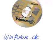 Windows 95 von Herbert Bachor